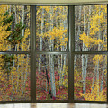 Autumn Forest Red Wilderness Floor Bay Window View by James BO Insogna