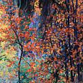 Autumn Forest by Sheryl Karas