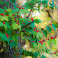 Autumn Fruit by Edward Peterson