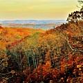 Autumn Glory by Michelle McPhillips