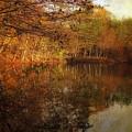 Autumn Glow by Jessica Jenney