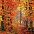 Autumn Glow by Sarah Kirk