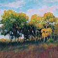 Autumn Grove by Keith Burgess