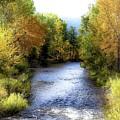 Autumn Harvest Along The River by Athena Mckinzie