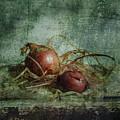 Autumn Harvest by larisa Fedotova