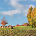 Autumn Hay Square by Bill Wakeley