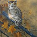 Autumn Highlights - Great Horned Owl by Johanna Lerwick