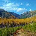 Autumn Hike by Eric Fellegy