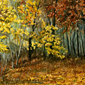 Autumn Hollow II by Mary Tuomi