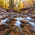 Autumn In American Fork Canyon by Scott Law