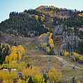 Autumn In Aspen by Livia Pavelescu