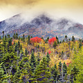 Autumn In Baxter State Park Maine by Brendan Reals