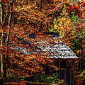 Autumn In Cades Cove Smnp by Mark Fuge
