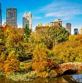 Autumn In Central Park 2 by Kenneth Laurence  Neal