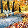 Autumn In City Park by Ariadna De Raadt
