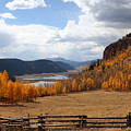 Autumn In Colorado by Gayle Johnson