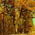 Autumn In Forest by Henryk Gorecki