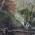 Autumn In Japan by Masami Iida