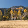 Autumn In Lockett Meadow by Susan Westervelt
