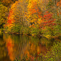Autumn In Monroe by Karol Livote