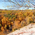Autumn In Riding Mtn National Park by Larry Ricker