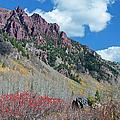 Autumn In The Aspen Hills by Joan Carroll