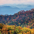 Autumn In The Great Smoky Mountains by Carol Mellema