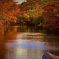 Autumn In The Park by Dennis Nelson