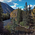 Autumn In The Rockies by Joan Carroll