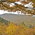 Autumn In The Smokies by Michael Peychich