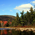 Autumn In The White Mountains by Paula Guttilla
