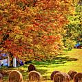 Autumn In West Virginia by Steve Harrington