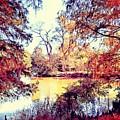 Autumn Island by James Maloney