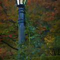 Autumn Lamp by Dennis Reagan