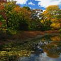 Autumn Landscape by Juergen Roth