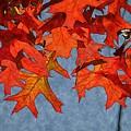Autumn Leaves 19 by Jean Bernard Roussilhe