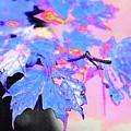Autumn Leaves In Blue by Betty LaRue