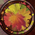 Autumn Leaves Pressed Contemporary Art Deco by Isabella Howard