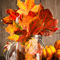 Autumn Leaves Still Life by Amanda Elwell