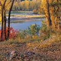 Autumn by Leland D Howard