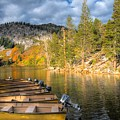 Autumn Light At The Lake by Lynn Bauer