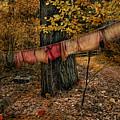 Autumn Linens by Robin-Lee Vieira