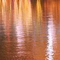 Autumn Lines by Aimelle