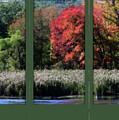 Autumn Marsh Through A Window by Smilin Eyes  Treasures