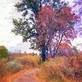 Autumn Melancholy by David King