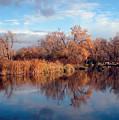 Autumn Mirror by Joni Moseng