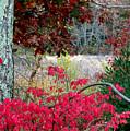 Autumn Mixtures by Joni Moseng