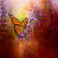 Autumn Monarch by Jai Johnson