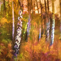Autumn Mood by Lutz Baar