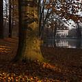 Autumn Morning In Park Branitz by Steffen Krahl